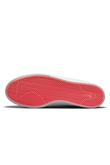 Buty Nike SB Shane