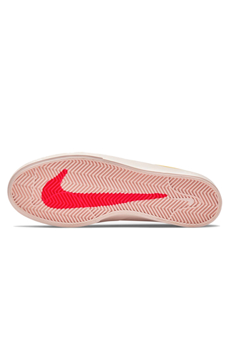 Buty Nike SB Shane T