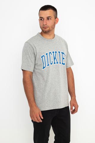 Koszulka Dickies Aitkin