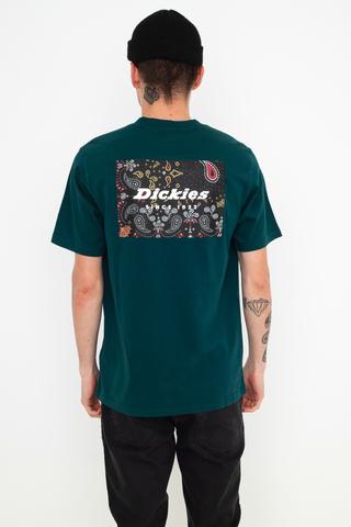 Koszulka Dickies Reworked